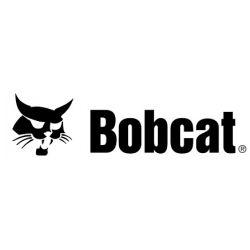 Valve pour jante Bobcat